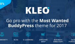kleo-v4-2-7-next-level-wordpress-theme